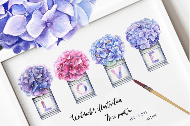 watercolor-hydrangea-illustration-iii
