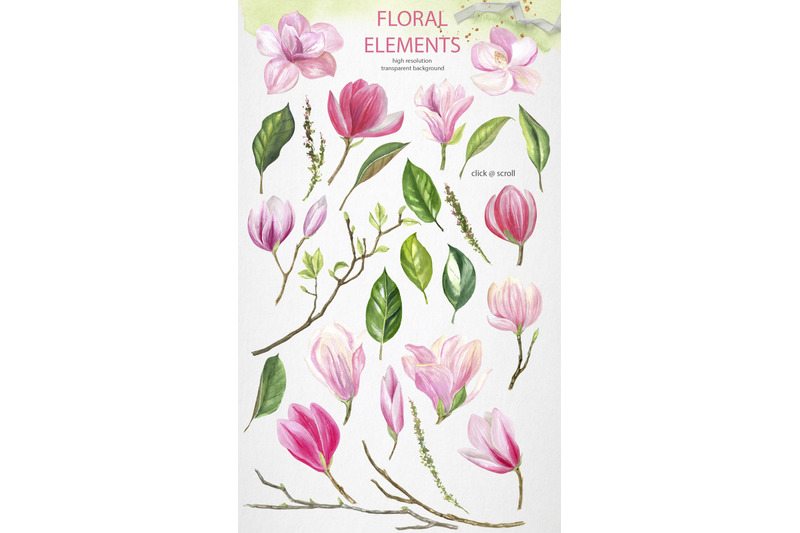 magnolia-freshness-watercolor-set