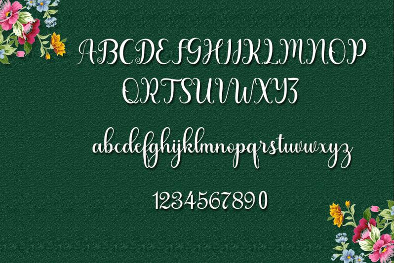 julayha-script