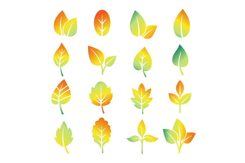 colorful-gradient-leaf-silhouettes