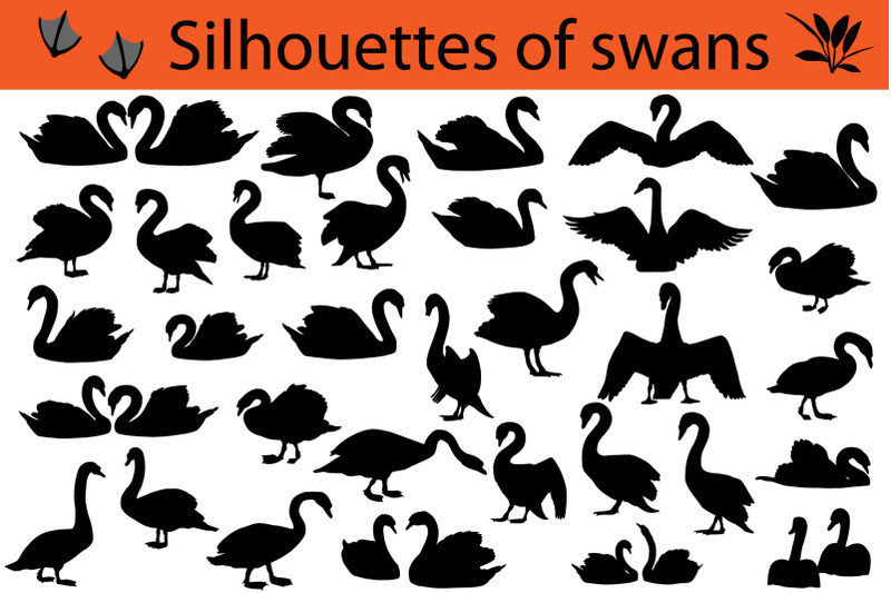 silhouettes-of-swans