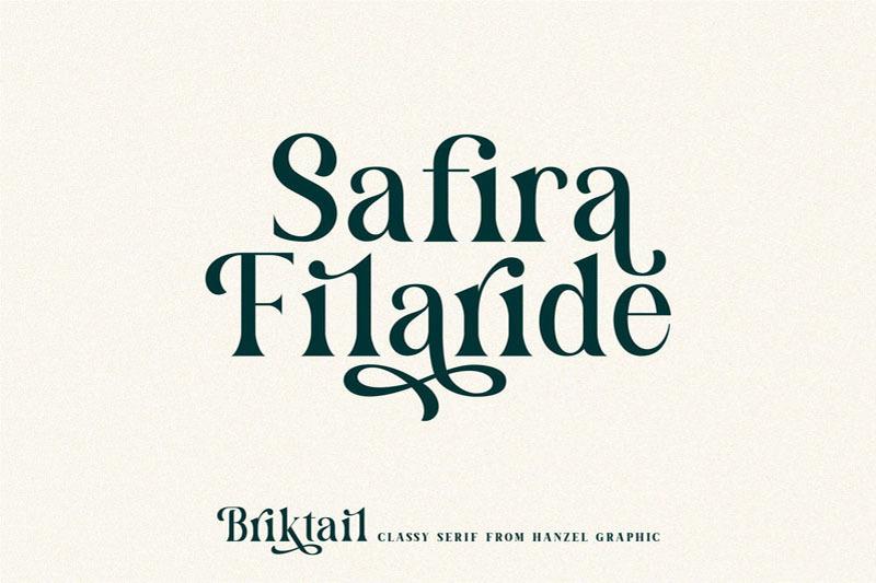 briktail-modern-serif-font