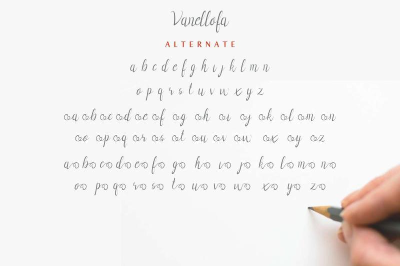 vanellofa