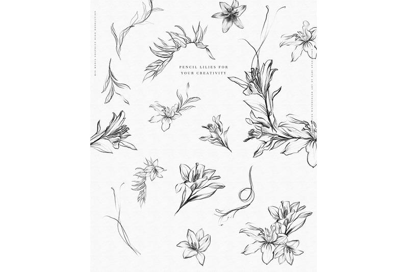 stunning-lilies