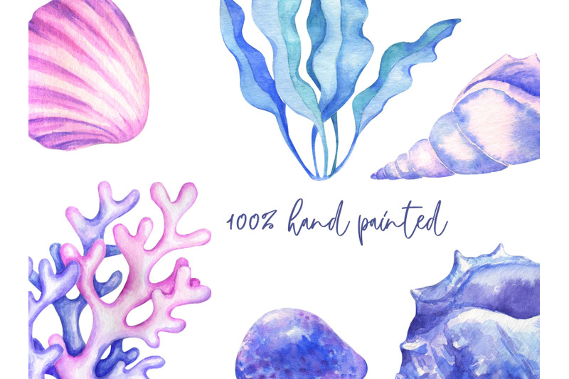 watercolor-seashells-clipart-ocean-conch-shells-starfish-seaweed-nauti