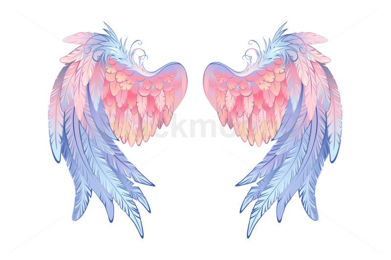 delicate-angel-wings