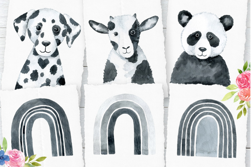 monochrome-animals-and-raibows
