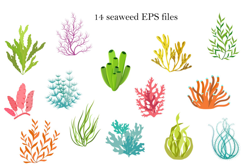 seaweed-color-and-black