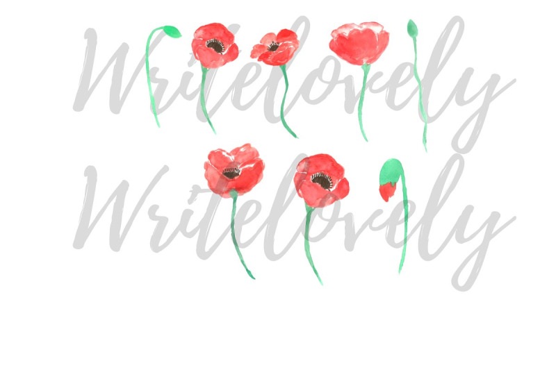 watercolor-poppy-clip-art