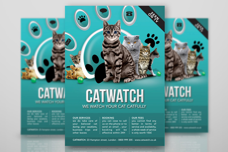 cat-lover-shop-watch-care-business