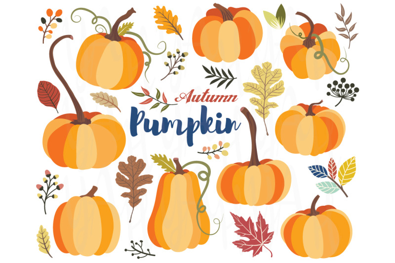 autumn-pumpkin-collections-set