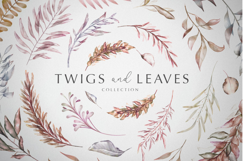 twigs-and-leaves-collection