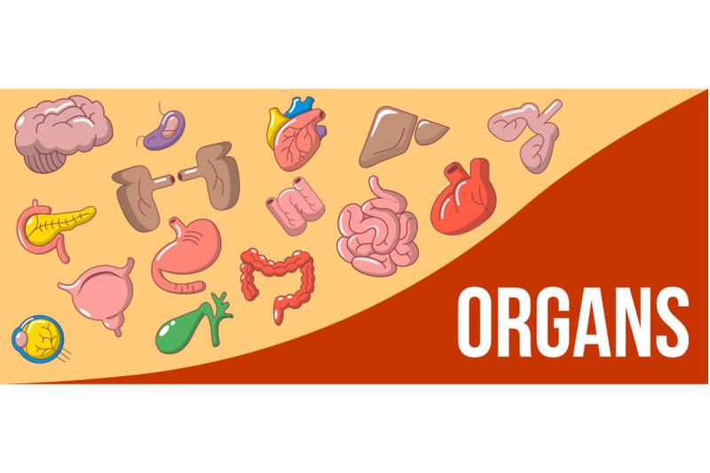 organs-concept-banner-cartoon-style