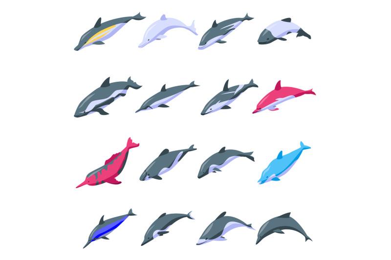 dolphin-icons-set-isometric-style