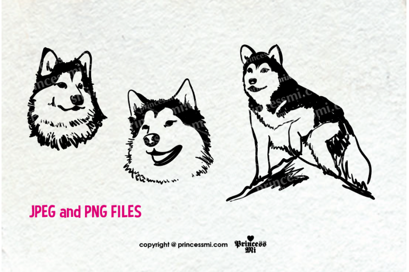 dog-alaskan-malamute-clipart-set
