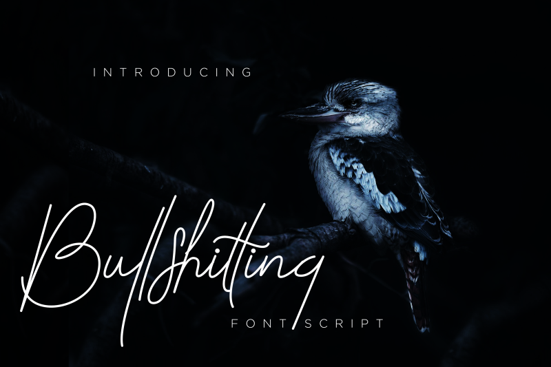bullshitting-font-signature