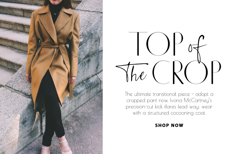 chic-luxury-font-duo