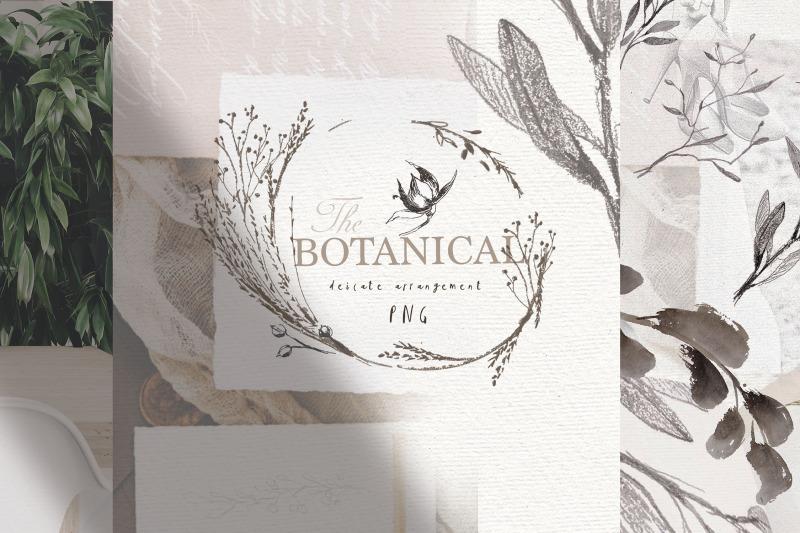botanical-logo-elements