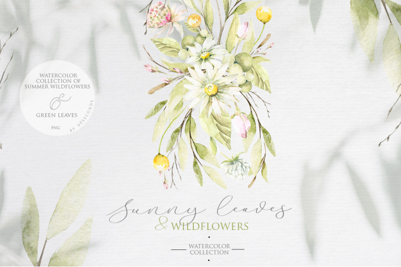 summer-leaves-amp-wildflowers-watercolor-collection