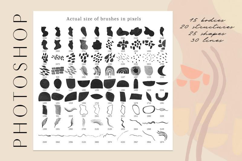torso-photoshop-amp-procreate-stamps