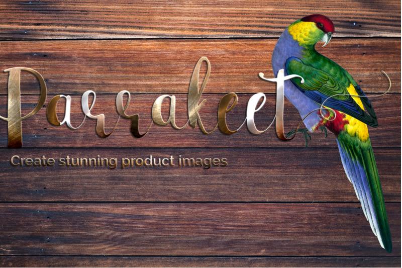 parrot-clipart-parakeet