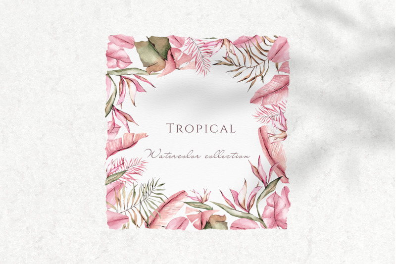 tropical-watercolor-collection