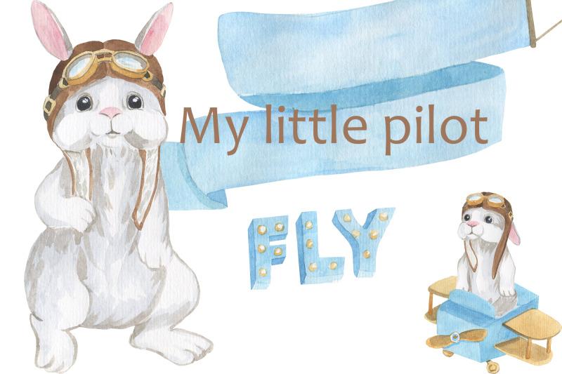 my-little-pilot-rabbit-little-pilot