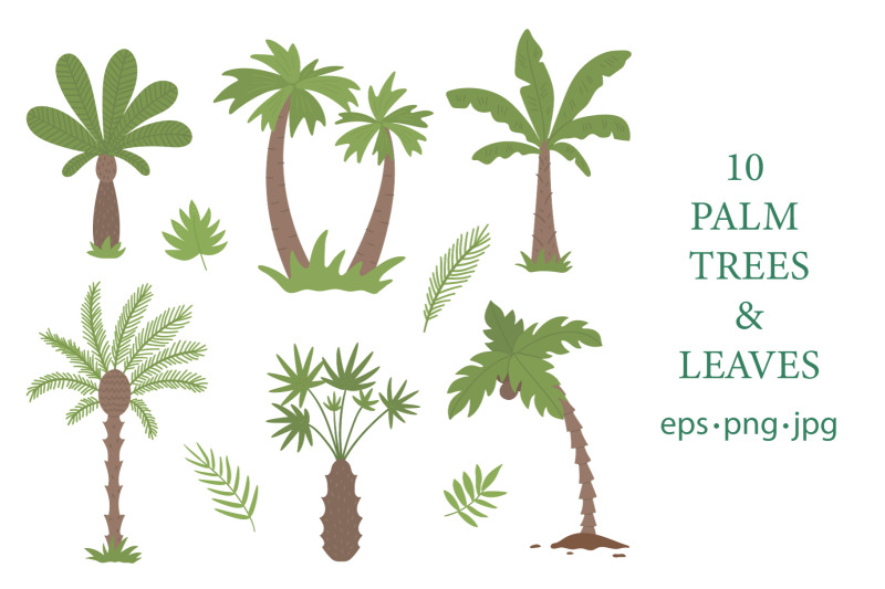 tropical-adventures