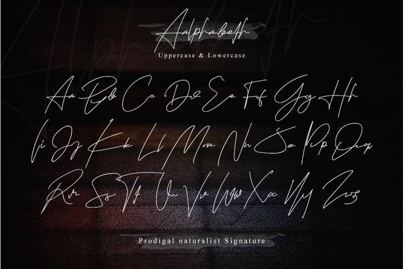 tokyo-fuku-signature-font-with-swash
