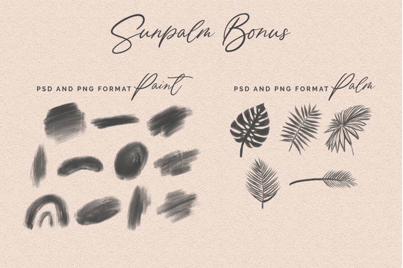 sunpalm-addict-modern-calligraphy
