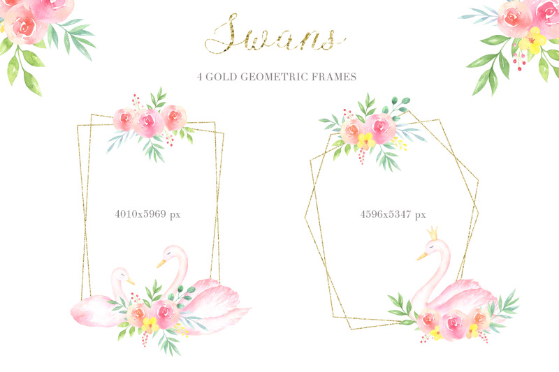 swans-watercolor-collection-of-cliparts-frames-and-patterns