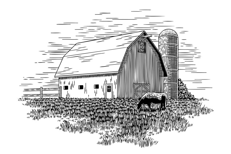 old-milk-barn-and-cow