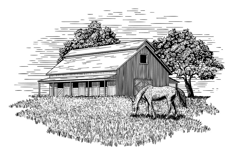 horse-stable-illustration