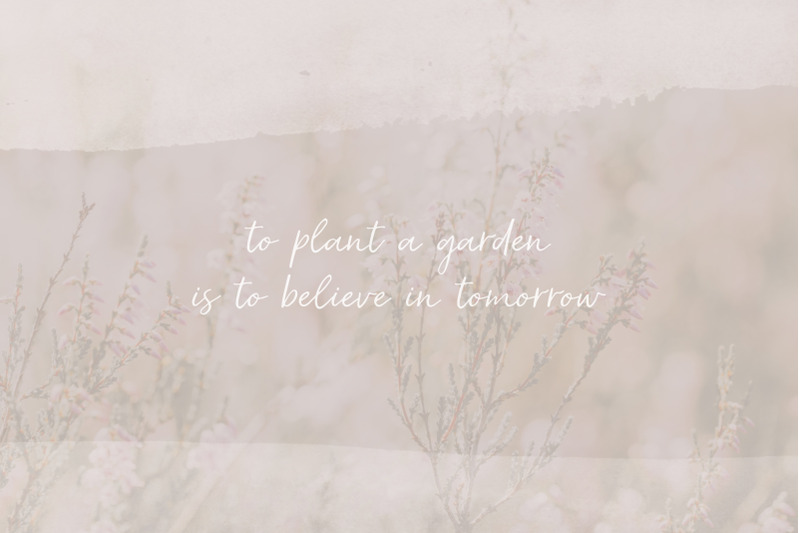 secret-garden-calligraphy-script