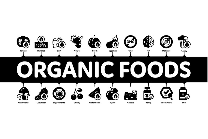 organic-eco-foods-minimal-infographic-banner-vector