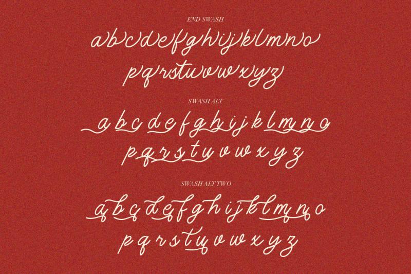 monology-swash-script-vintage-font