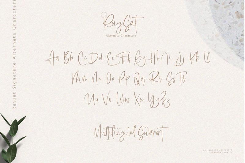 raysat-signature