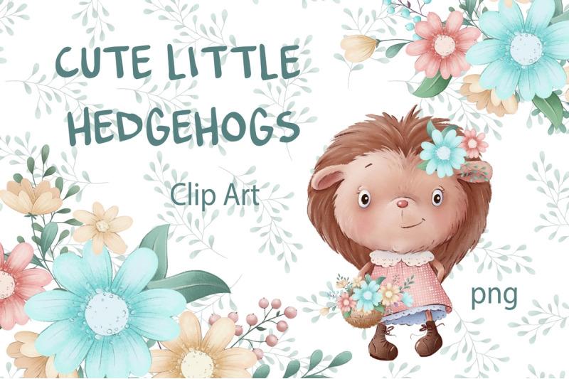 cute-little-hedgehogs