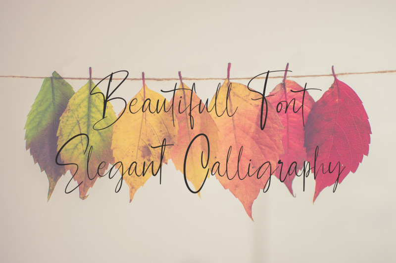 contributor-calligraphy-font