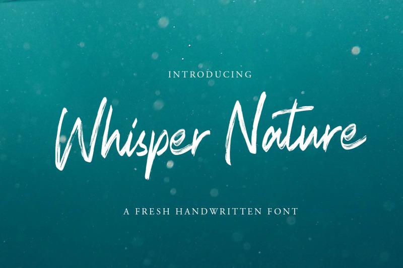 whisper-nature-brush-script-font
