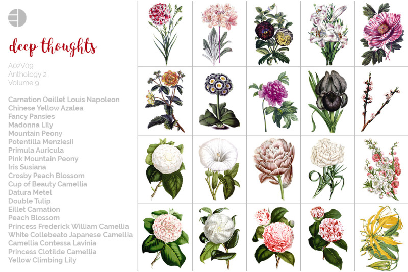 flowers-clipart-bundle