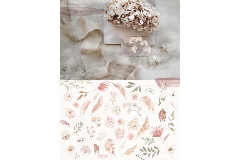creamy-watercolor-floral-collection
