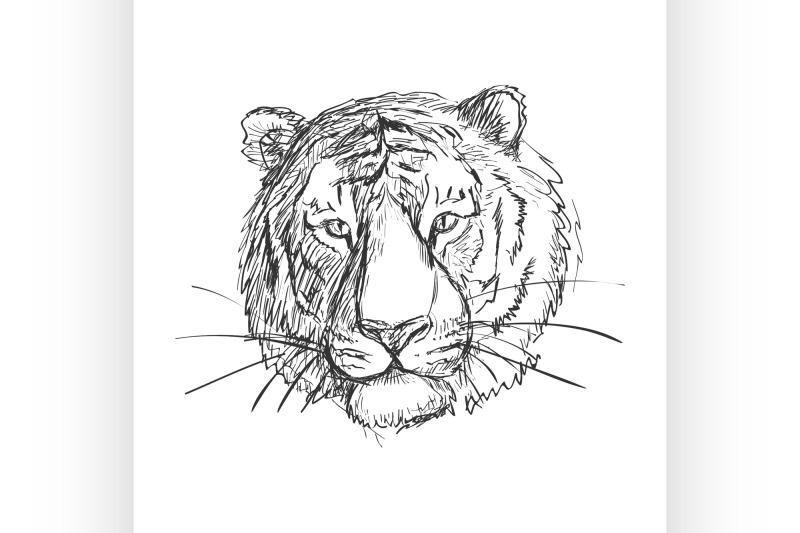 sketchy-doodle-tiger