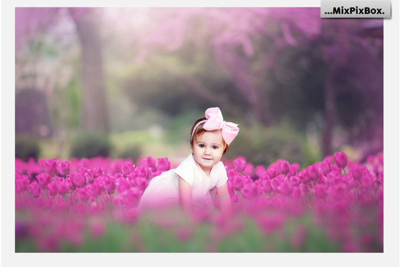 spring-tulips-backdrop