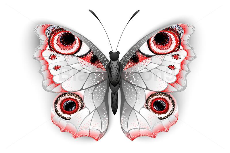 gray-butterfly-peacock-eye