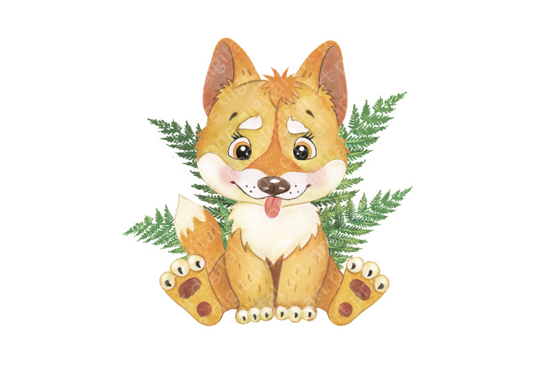 australian-animals-clipart-watercolor-clipart-tropical-little-animal