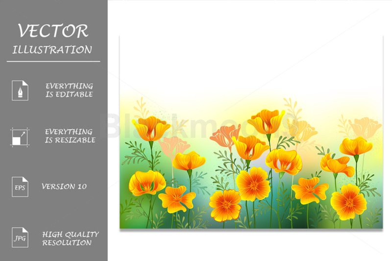 background-with-california-poppy