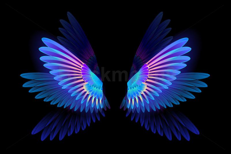 glowing-hummingbird-wings