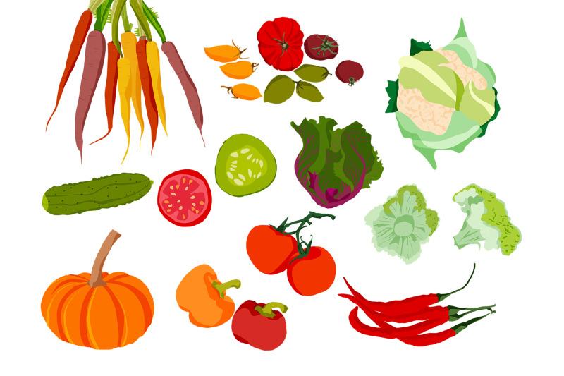 fruit-and-vegetable-illustration-clip-art-19-png