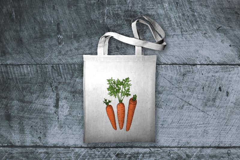 carrot-sketch